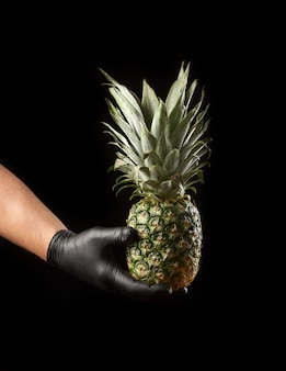Male hand in black latex glove holds a whole unpeeled pineapple, black background