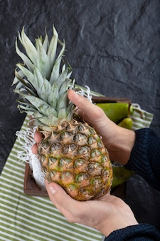 Male hand holding single ripe pineapple on black background.