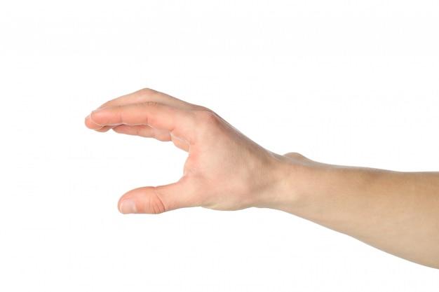 白い背景で隔離の何かを持っている男性の手
