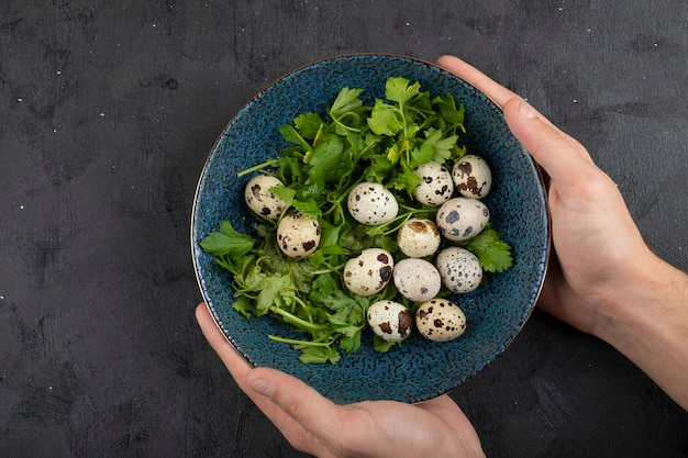 Male hands holding blue plate of fresh raw quail eggs and parsley leaves.