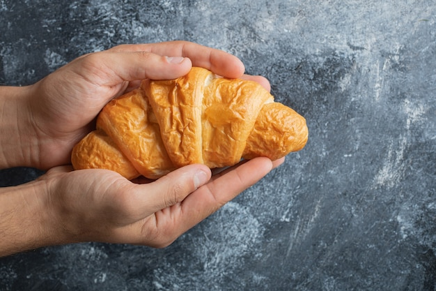 Male hands holding fresh croissant on marble background