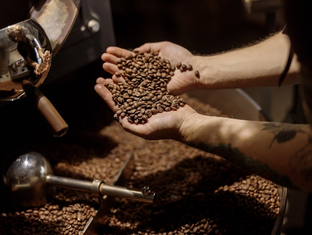 Male hands holding freshly roasted coffee beans