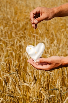 Male hands holding stuffed toy heart among wheat ears selective focus