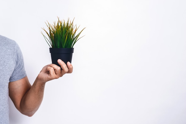 Male hands with fresh grass pot