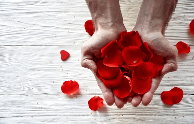 Male hands with red rose petals on a white wooden. valentine's day concept