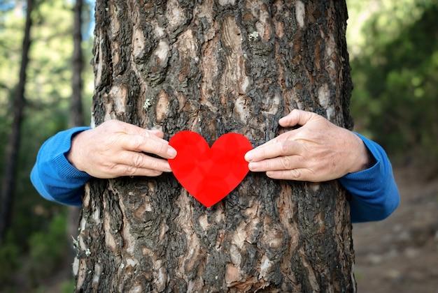 ハート型の紙を持って、森の木の幹を抱きしめる男性の人間の腕。森林破壊の概念から惑星を救う