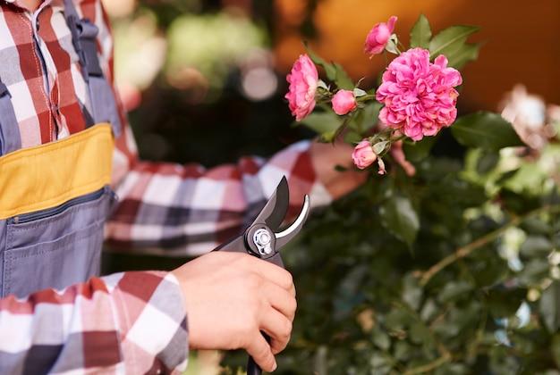 男性の人間の手剪定花