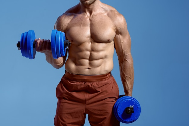 Male muscular athlete holds dumbbells in studio, blue background. one man with athletic build, shirtless sportsman in sportswear, active healthy lifestyle