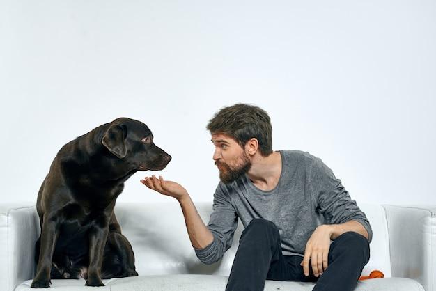 Владелец мужского пола играет с собакой на диване, тренируя веселое домашнее животное в светлой комнате.