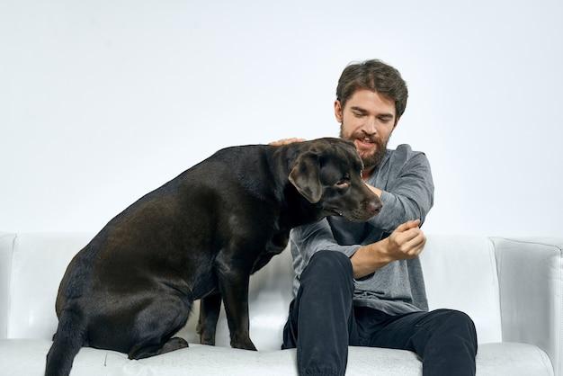 男性の飼い主はソファで犬と遊ぶ楽しいライトルームの友達のペットを訓練する