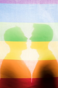 Male silhouettes behind lgbt flag