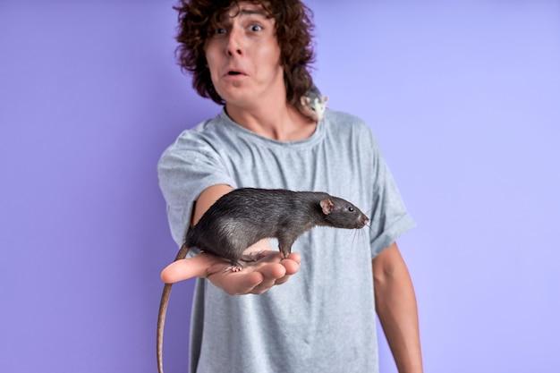 남성 손에 회색 쥐와 보라색 배경에 고립 된 어깨에 다른 쥐, 가축을 두려워하는 남자의 초상화