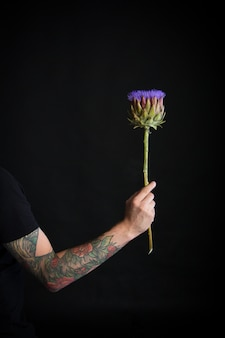 Male tattooed hand holding purple artichoke flower on black, greeting card or concept