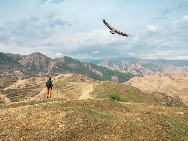バックパックを背負った男性観光客は、美しい高山を背景にワシの飛行を眺めています。ダゲスタン。