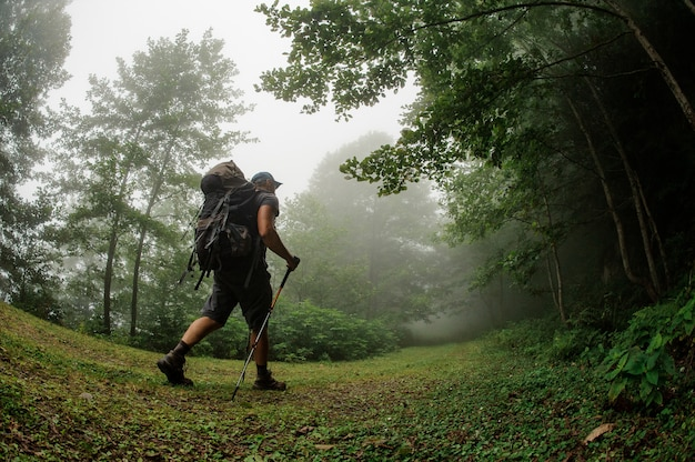 Male tourist with backpack walking through forest