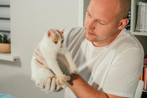 手袋とtシャツを着た男性の獣医は、健康診断のために、白と生姜の子猫を腕に抱えています