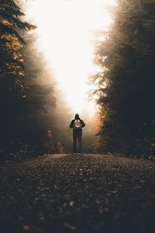 Мужчина с рюкзаком стоит на тропинке между высокими толстыми деревьями, глядя на свет