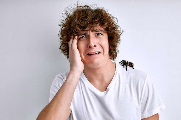 白い背景で隔離の肩にクモを持つ男性。おびえた若い男は恐怖症を持っています、彼はエキゾチックな昆虫や哺乳類を恐れています
