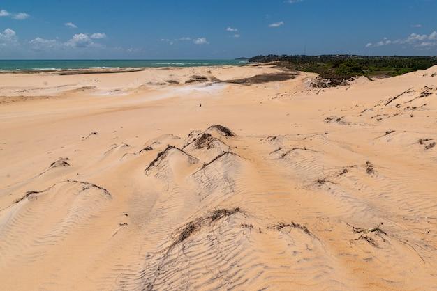 マレンバ砂丘ピパビーチチバウドスルナタールリオグランデドノルテブラジル近く