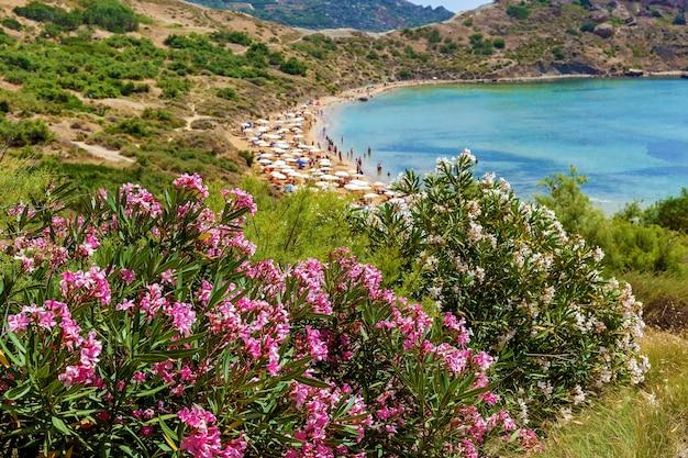 몰타 해변 여름 열대 리조트 몰타 ghajn tuffieha 베이의 해변