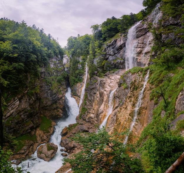 滝のmalvnychyyビュー