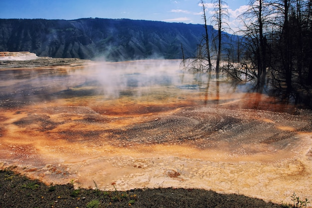 Mammoth hot springs on hill peak, yellowstone