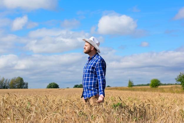 黄金の麦畑の農学者。男性は小麦の穂を手に持っています。