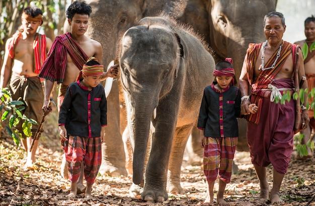 Человек и дети едут в джунглях со слоном, моменты образа жизни из северного таиланда