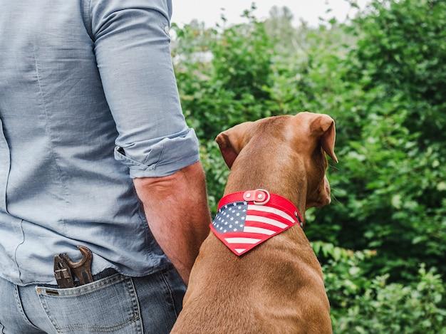 미국 국기를 가진 남자와 개