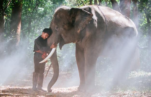 タイ北部の男と彼の象