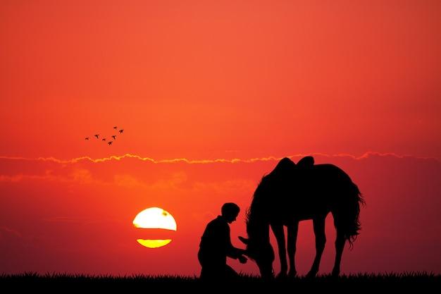 夕暮れ時の男と馬のシルエット