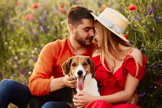 男と女は、赤い羊の緑のフィールドに面白いビーグルで座っている