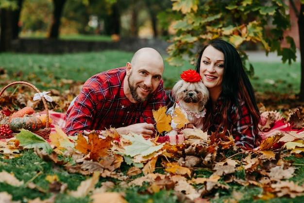 犬と一緒に男女が紅葉の毛布の上に横たわる