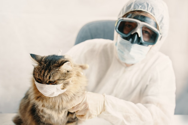 Man in biohazard suit and kitten wear face shield cat in protection mask
