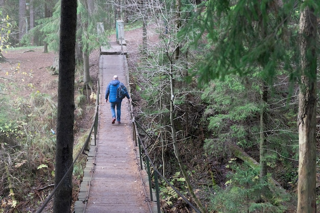 A man in a blue jacket with a backpack walks along the suspension bridge in the forest. wildlife travel concept.