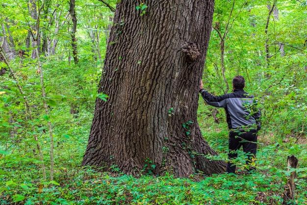 緑の森の古い大きな木のそばの男