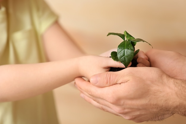 Man and child with young plant on blurred background