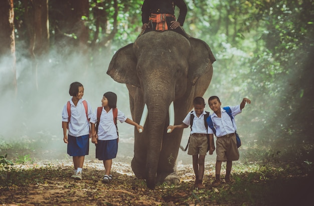 Man and children going in the jungle with the elephant, lifestyle moments from northern thailand