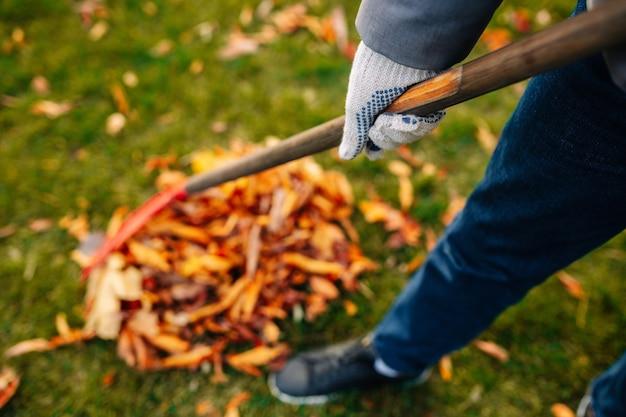 裏庭で落ち葉を集める男。秋の風景。寒い季節。男性による赤い熊手が葉をかき集めているクローズアップショット。