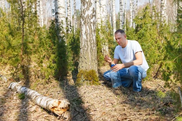 Мужчина собирает березовый сок в весеннем лесу