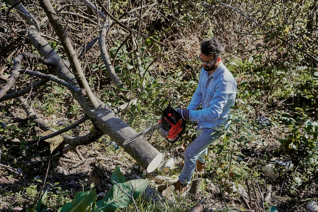 A man cuts down a tree in the garden of his house