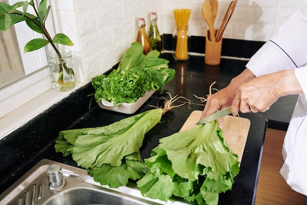 Man cutting off lettuce roots