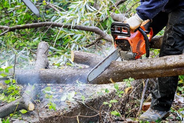 チェーンソーで木を切り倒して倒れないようにする男