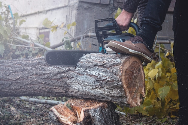 A man cutting tree with chainsaw
