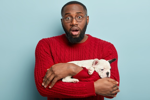 Man and dog love. puzzled dark skinned male with thick bristle, carries french bulldog, stunned by unusual disease his pet has, wears red jumper, looks through round spectacles, isolated on blue wall