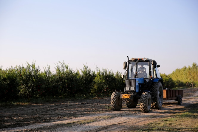Man driving tractor through field