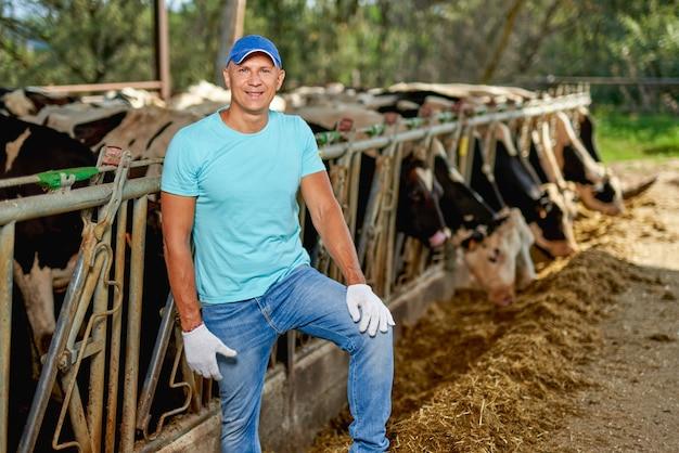남자 농부는 젖소 농장에서 일하고 있습니다.