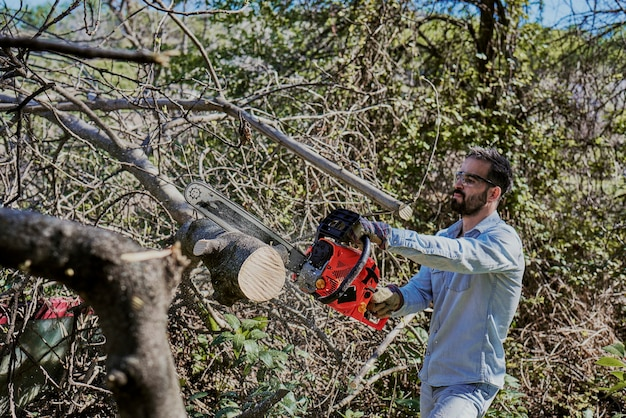 Man felling a forest with an electric chainsaw