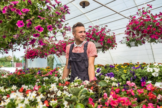 Man gardener wearing uniform working with decorative flower into a pot in a industrial plants greenhouse