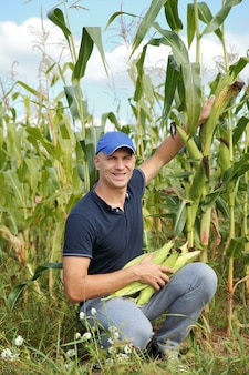 Man gathering corn on field